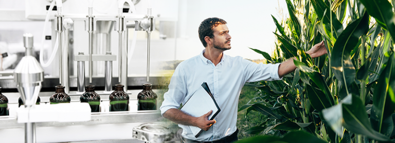 Mature bearded man working with plants